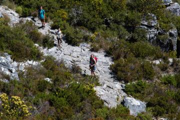 28.10. Tafelberg - Abstieg zu Fuß