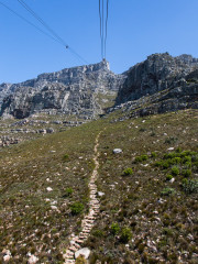 28.10. Tafelberg - Cable Car (363m -> 1067m)