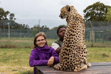 30.10. Cheetah Outreach - Gepardenstreicheln :-)