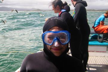 1.11. Kleinbaai - White Shark Cage Diving