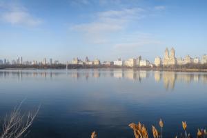 17.3.2012: Central Park