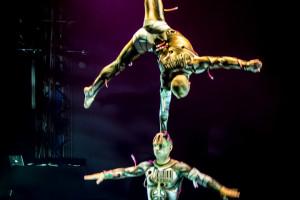 25.12.2014 Zirkus Flicflac