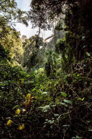 """14.7. Victoria Falls, Wanderung in den """"Boiling Pot"""""""