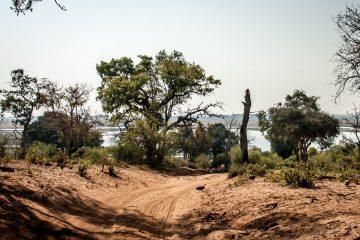 17./18.7. Chobe NP, River Drive nach Ihaha