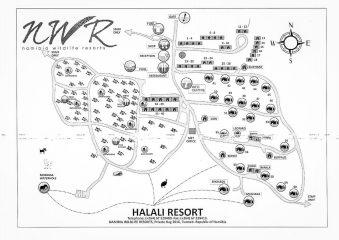 26./27.7. Halali Restcamp