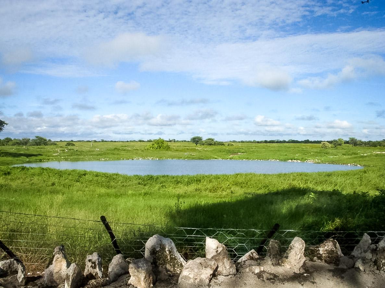 28.7. Okaukuejo Waterhole - im März, grün, aber ohne Tiere