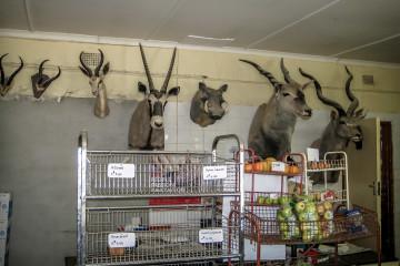 30.8. Kamanjab - Fleischmarkt