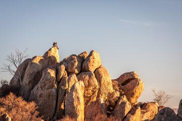30.7.-1.8. Hoada Camp - Klettern