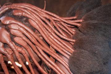 31.7. Himba-Dorf - auch für die Haare