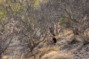 2.8. Wanderung bei den Ugab Terraces