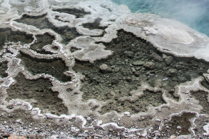 21.7. North Upper Geyser Basin - Artemesia Geyser