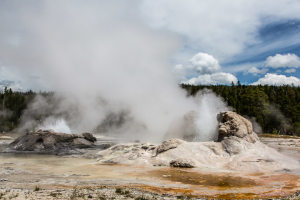 21.7. Upper Geyer Basin - Grotto Geyser