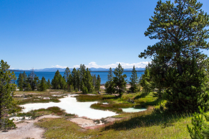 22.7. West Thumb Geyser Basin, Thumb Paint Pods