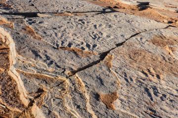 24.-25.7. Red Fleet SP - Dinosaur Tracks
