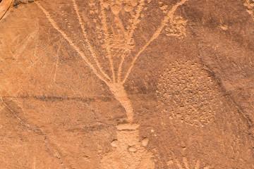 30.7. Petroglyph Drive