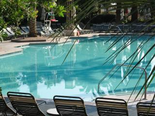Palmen in der Wüste - es muss ja idyllisch sein am Pool ;-)