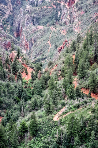 Grand Canyon: North Kaibab Trail