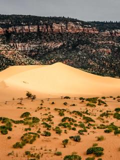Coral Pink Sand Dunes: Licht Wind, Sand, Rumtollen ...