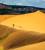 Südwesten 2008: Coral Pink Sand Dunes