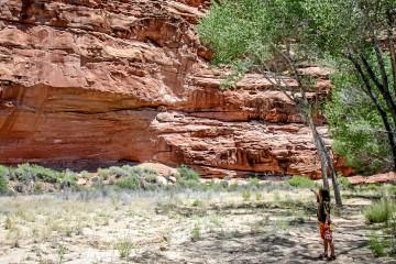 9.7. Wanderung zu Anasazi-Ruinen