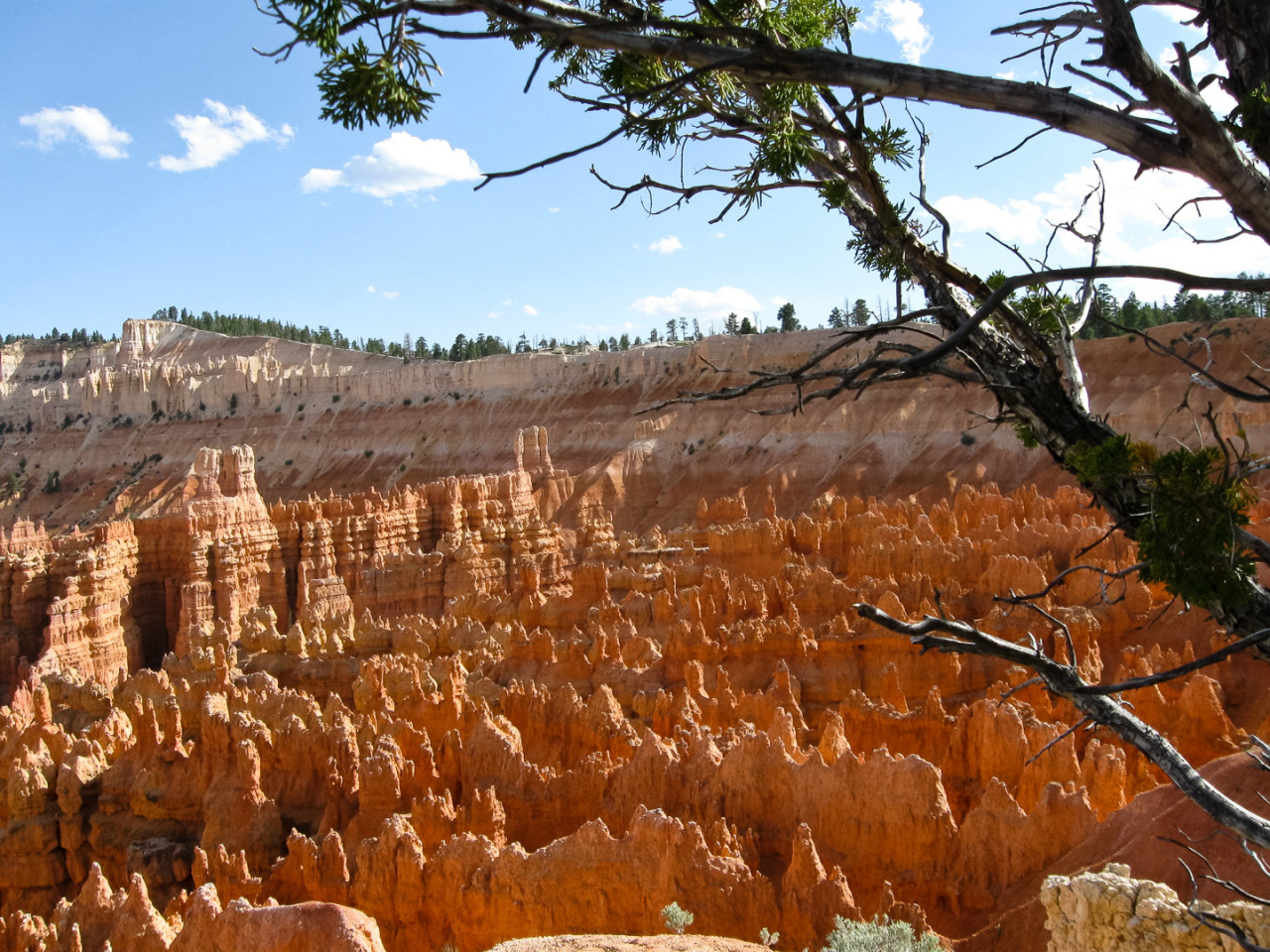 16./17.6. Bryce Canyon - Sunset Point