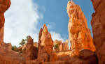 Canyons 2011: Bryce Canyon
