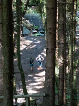 27.5.: Rur zwischen Monschau und Einruhr