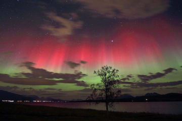 Arctic Light, red Aurora - by Fred Olsen, Norway