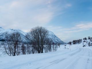 16.2. Morfjord