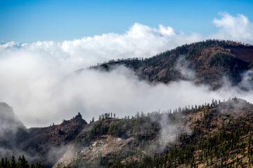 9.11. Über den Wolken, Corona Forestal
