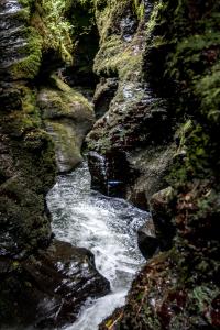 8.8. - Lydford Gorge