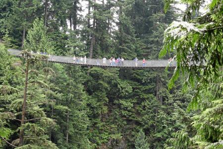 Vancouver: Capilano Bridge