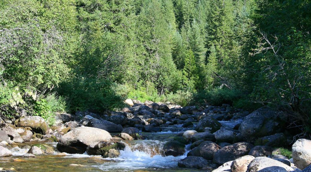 Boulder Creek, kleiner Nebenfluss des Lochsa River