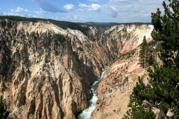 Yellowstone: Grand Canyon of the Yellowstone.