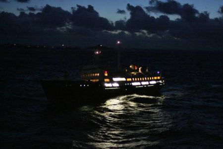 Das zweitälteste Schiff: MS Lofoten, Bj. 1964