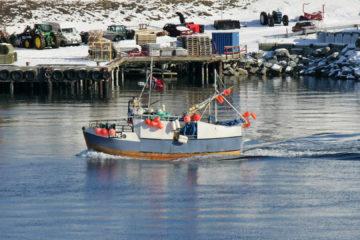 Finnsnes - ein kleiner Fischerort ...