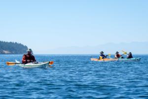 31.7.2017 - Fahrt bis Posey Island