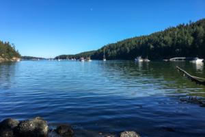 31.7.2017 - Reid Harbour, Stuart Island
