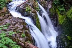 8.8.2017 - Olympic NP, Wanderung zu den Sol Duc Falls
