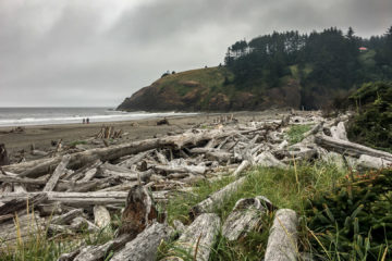 12.8.2017 - Cape Disappointment SP, Benson Beach