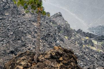 18.8.2017 - Cinder Cone Lava Flow, Newberry Volcanic NM