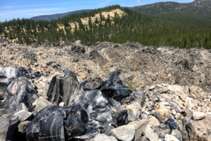 19.8.2017 - Newberry NVM, Big Obsidian Flow