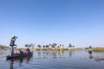 4.9.2019 - Kayak Tag 5 - 5,5 std Rückfahrt