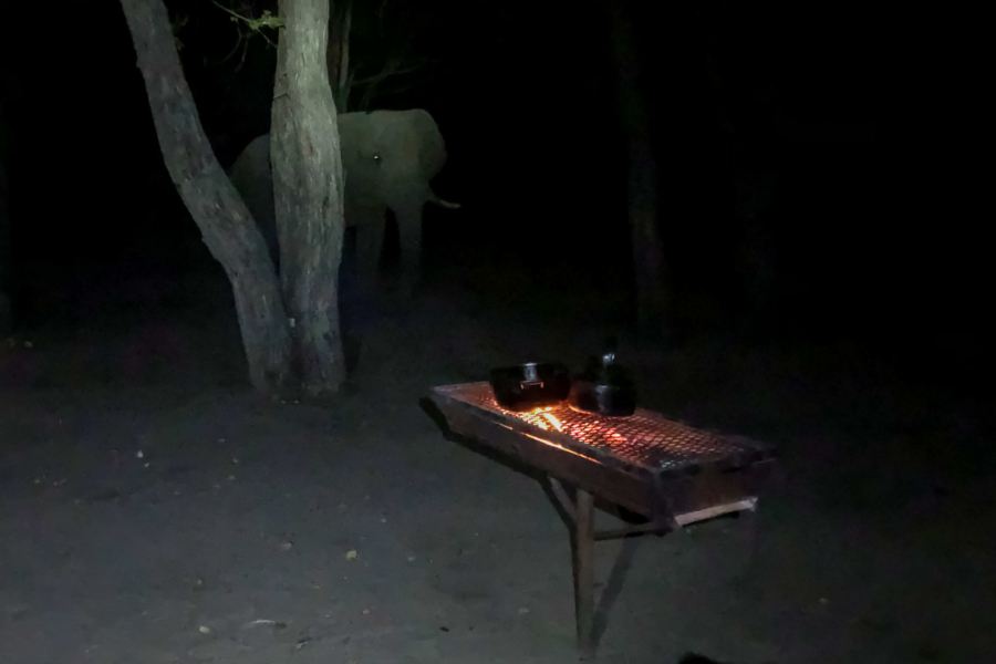6.9.2019 - Moremi South Gate - Elefant beäugt den 1-Flammen-Herd ;-)