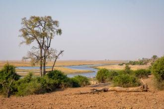 12.9.2019 - Chobe Riverfront