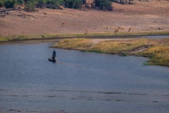 13.9.2019 - Chobe Riverfront - Fischer, Red Lechwe