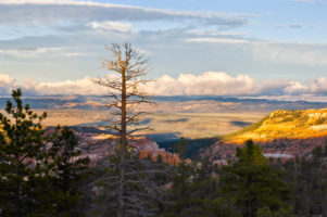 7.-9.8.2010 - Bryce Canyon