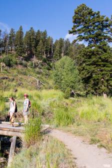 19.7. Beaver Ponds Trail
