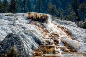19.7. Mammoth Hot Springs - Palette Spring
