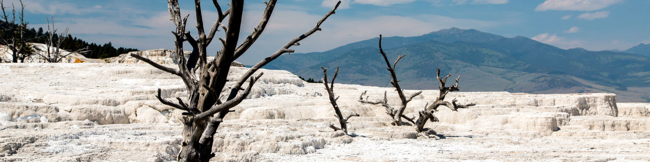 19.7. Mammoth Hot Springs - Main Terrace